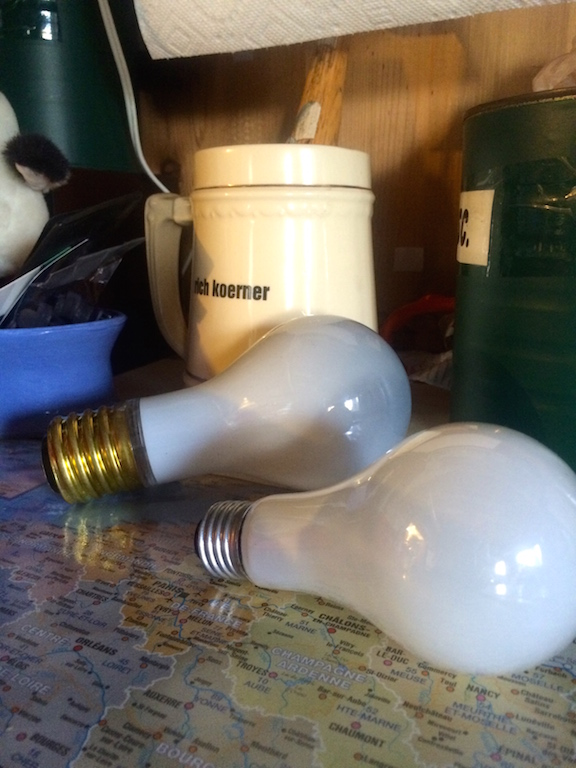 Light bulbs of this variety, soon to be a thing of the past.  The larger 'mogul' bulb is almost impossible to find and I already have an adapter for a CFL for it.